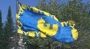 Image result for carolingian banner