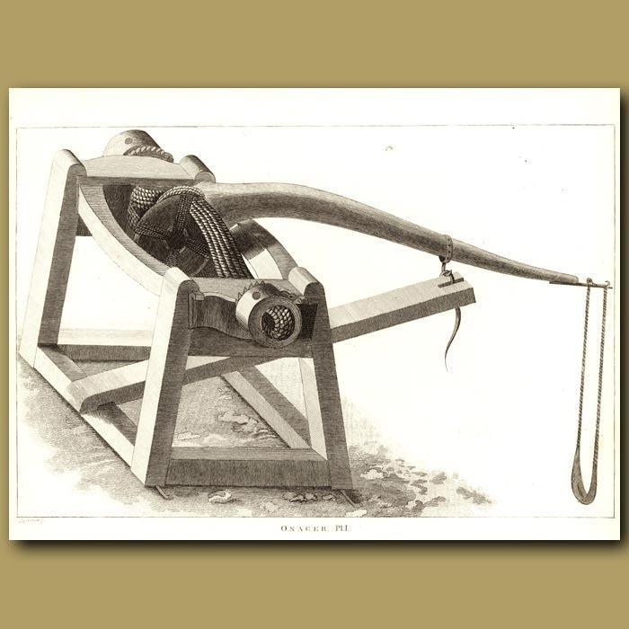 Onager Pl.1 (Roman Siege Machine). Genuine antique print for sale.