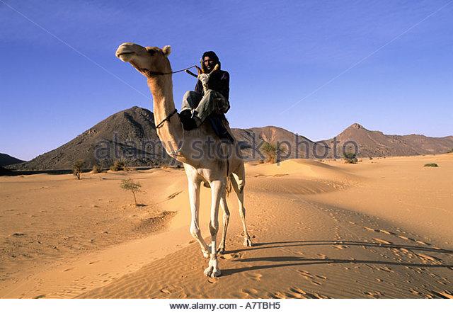 niger-sahara-tenere-desert-tuareg-camel-