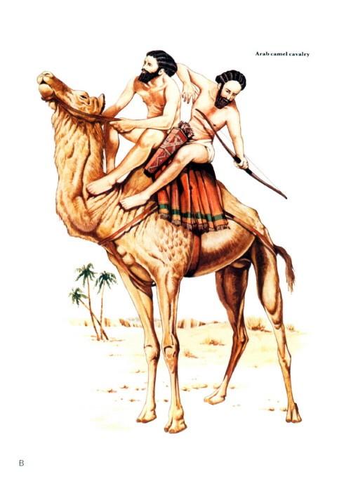 Persian%20Arab%20Camel%20Cavalry.jpg
