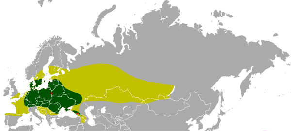 https://upload.wikimedia.org/wikipedia/commons/thumb/f/f2/Bison_bonasus_historic_holocene.svg/600px-Bison_bonasus_historic_holocene.svg.png