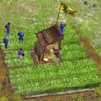 https://vignette.wikia.nocookie.net/ageofempires/images/9/9f/Rice_paddy.jpg/revision/latest/window-crop/width/200/x-offset/8/y-offset/0/window-width/219/window-height/218?cb=20120913171605