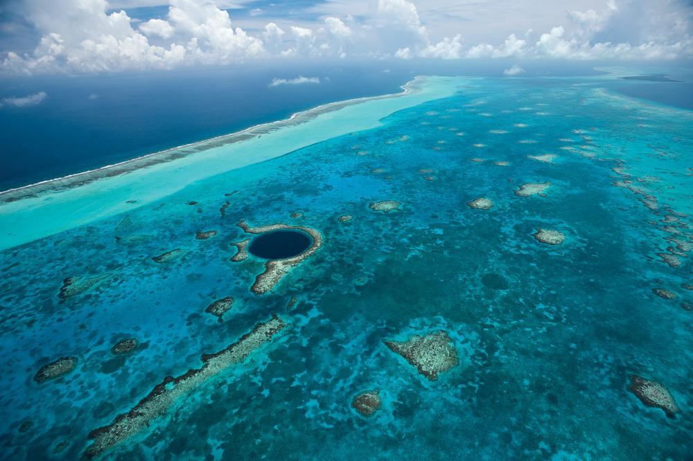 Resultado de imagen para belize reef