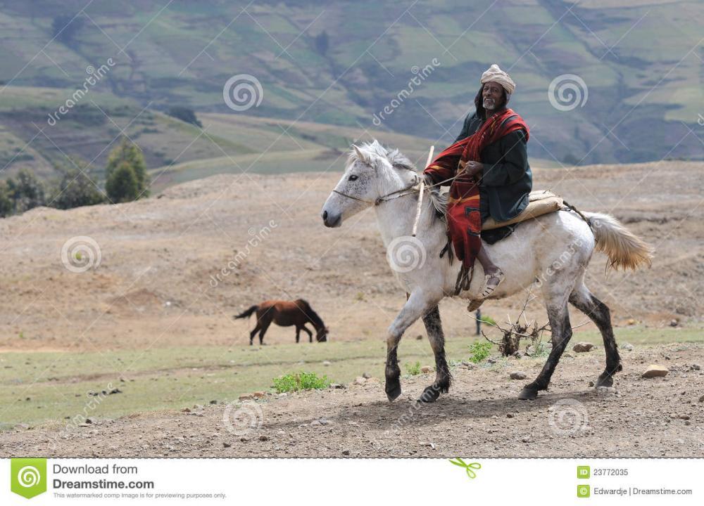 ethiopian-horse-rider-23772035.jpg