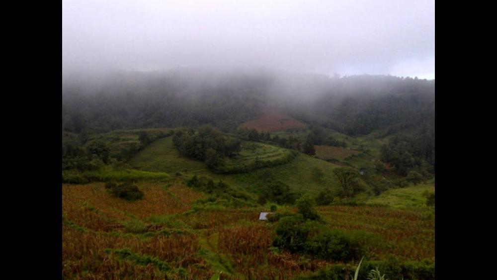 Resultado de imagen para Hondura highlands