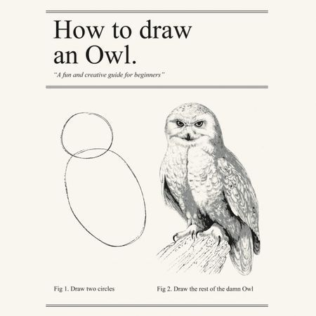 post-35400-How-to-draw-an-owl-meme-HUo8.jpeg