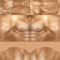 Attached Image: body.png