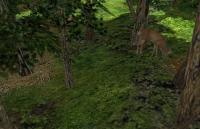 deep_wood-wood3.jpg