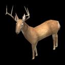fauna_deer.png
