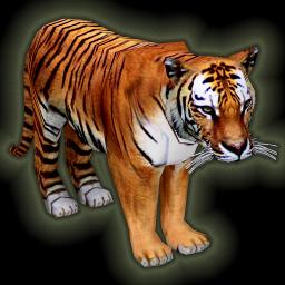 tiger_256.png