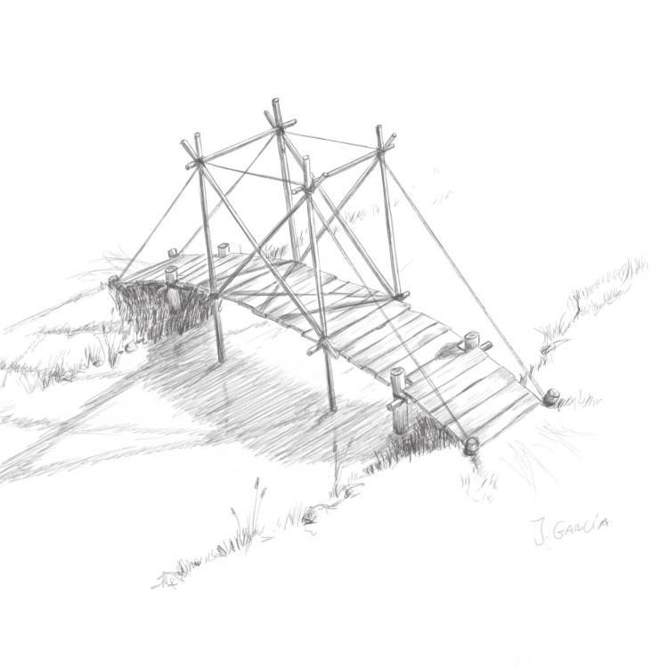 Image-1 6.jpg