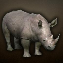 fauna_rhino.png