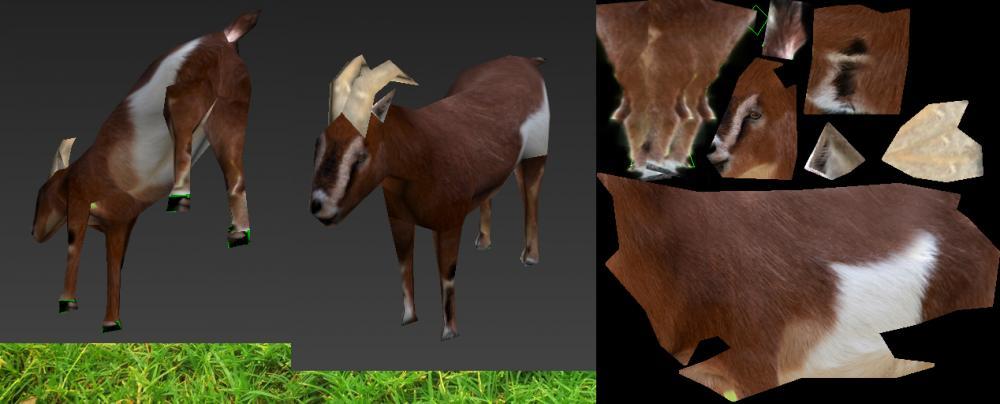 goat-wip-1.jpg