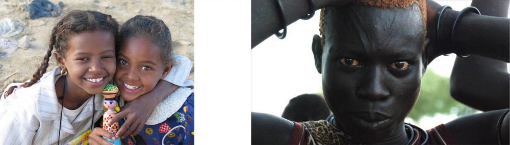 Sudan phenotype.jpg
