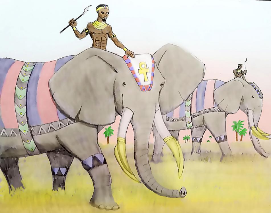 591b1c4018f65_elephants-on-the-marchbytyrannoninjaB.thumb.jpg.16ca21860a0aaf74cd84894129cbef6e.jpg