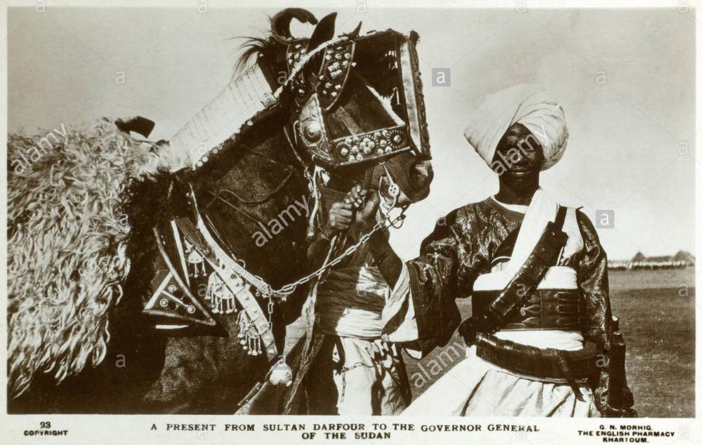 gift-from-sultan-of-darfur-DRFA52.thumb.jpg.ada7c789910e89095d31e24c6582147f.jpg