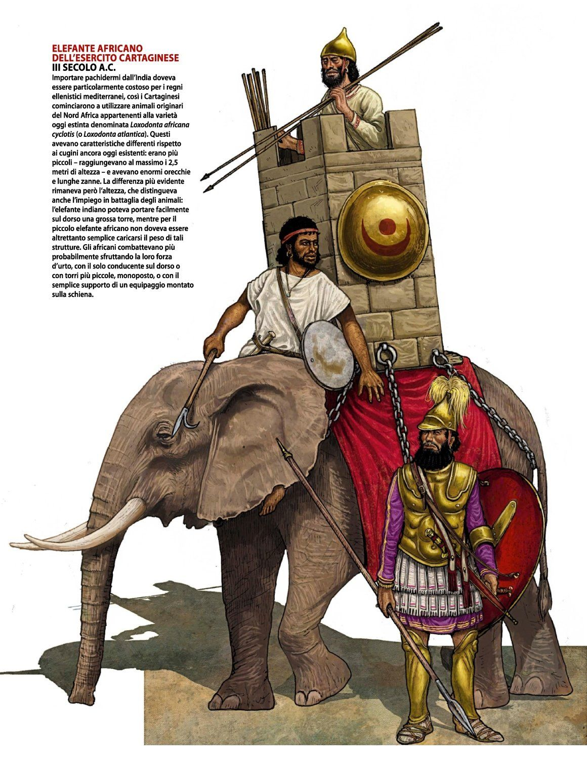 sundiata war At mema, sundiata spends some time with moussa tounkara, who acts as a father figure for sundiata and teaches him the ways of war tounkara hopes to make sundiata his heir sundiata learns of the evil sorcerer king soumaoro kanté, who is slowly conquering all the kingdoms in mali.