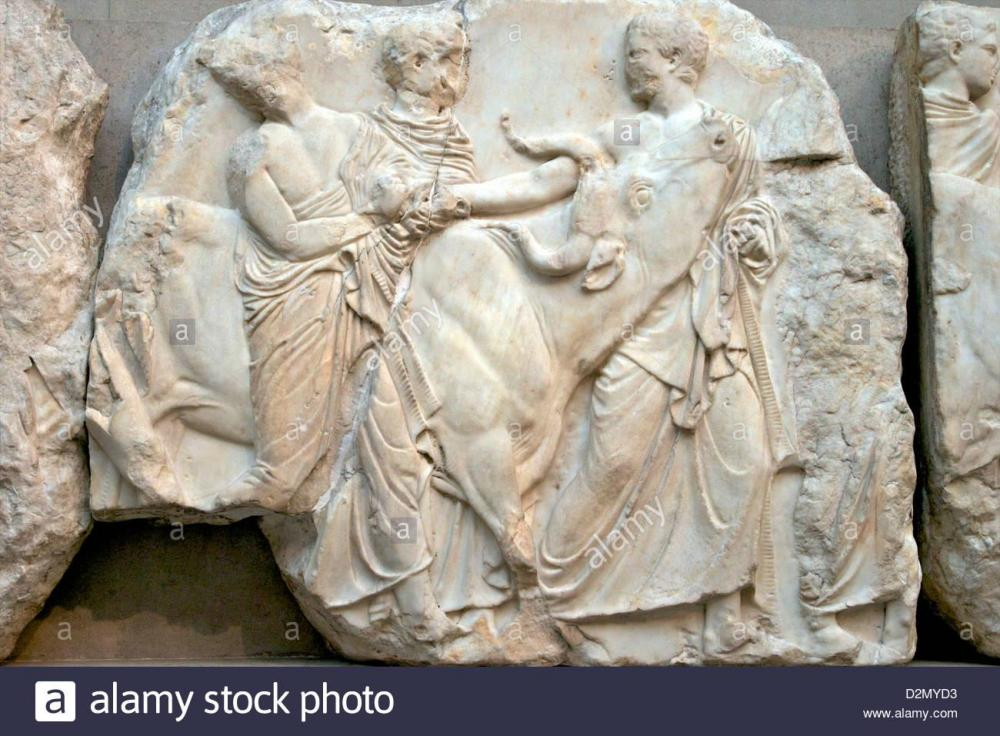 youth-with-heifer-south-frieze-parthenon-british-museum-london-england-D2MYD3.thumb.jpg.171ee90e2555cee54172d155fdd35e45.jpg