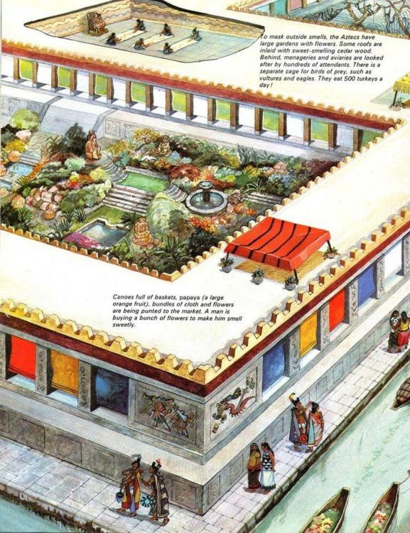 681fe65223cb7597938cfc205860312b--aztec-empire-aztec-culture.thumb.jpg.b12c932f88097efcef12440f9a370a46.jpg