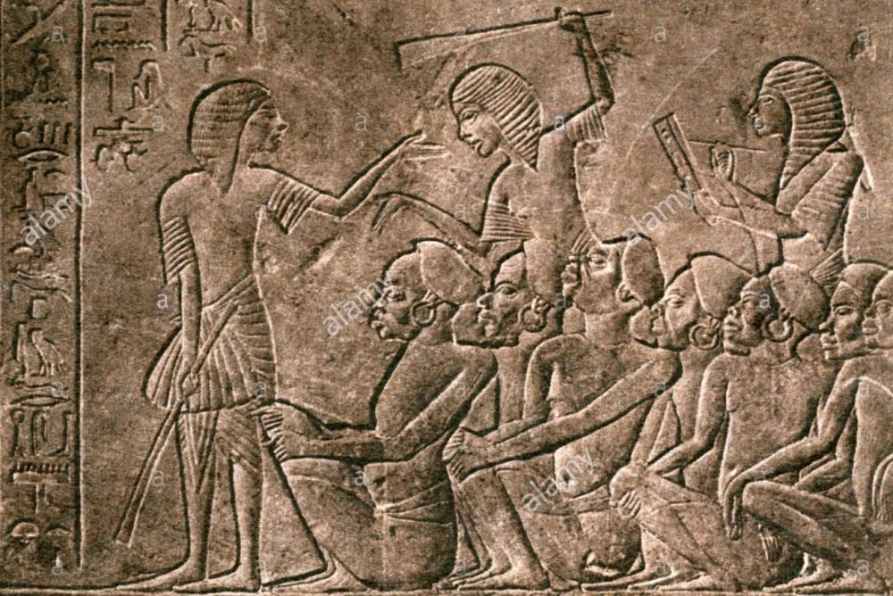 slavery-captured-nubians-are-registered-by-a-scribe-egyptian-relief-DB4KC5.thumb.jpg.bc8c6d8c899579774d422e544a9274ea.jpg