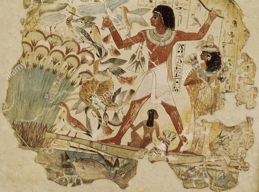 fine-arts-ancient-world-egypt-painting-hunting-birds-tomb-of-nebamun-B2K089.thumb.jpg.77e0ba9a910b3769ef04e963fe29cd36.jpg