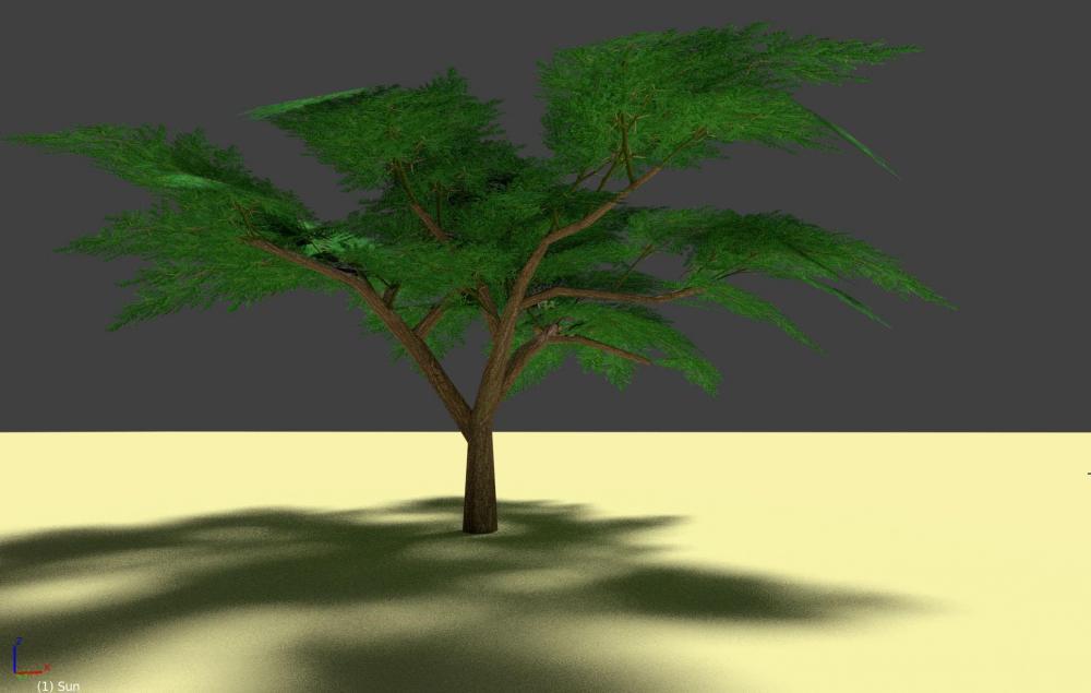 954776600_Acaciatestscreen3.thumb.jpg.6b6595891c5f1dc1e46b703f05ab4a2e.jpg