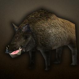 fauna_boar.png.079f49b9bc85cb613543514a42f4821c.png
