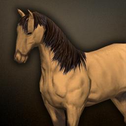 fauna_horse.png