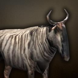fauna_wildebeest.png.630c8dfb50e47b0ecd5c393a341c57cd.png