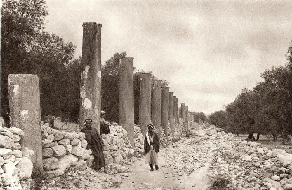 Ruins_of_Samaria.thumb.jpg.3a377b8975c7b01d5b95f7818ec047ca.jpg