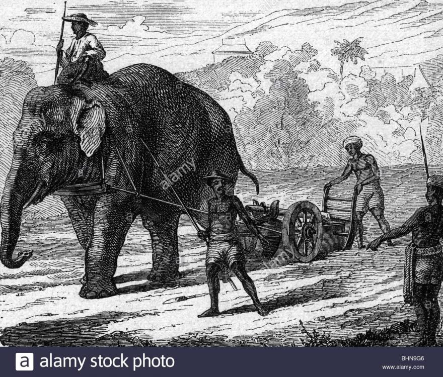 agriculture-farming-men-with-elephant-plow-wood-engraving-19th-century-BHN9G6.thumb.jpg.a731177aba3a4b16542bd47c9aad6565.jpg