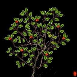 berry_bush_02.png